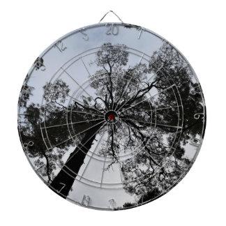 TALL TREE CANOPY TASMANIA AUSTRALIA DARTBOARD