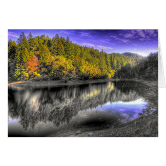 Tam Tree Reflection Card