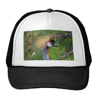 Tame a Wild Bride Trucker Hat