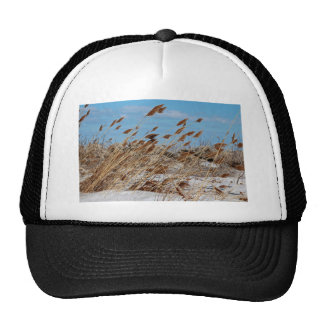 Tame a Wild Wind-horizontal Trucker Hat