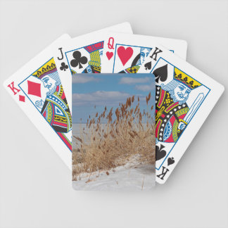Tame a Wild Wind II Bicycle Playing Cards