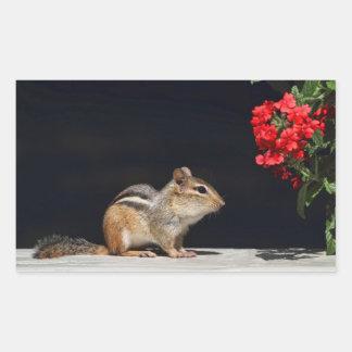 Tamia et photo de fleurs de rouge autocollant