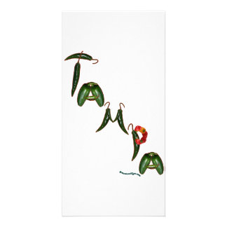 Tampa Chili Peppers Photo Greeting Card