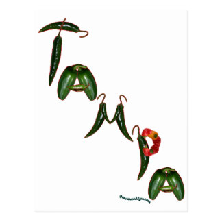 Tampa Chili Peppers Postcard