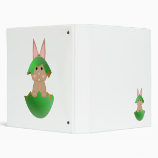 Tan Bunny In A Green Christmas Ornament Binders