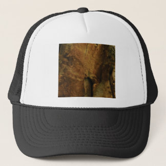tan rock texture trucker hat
