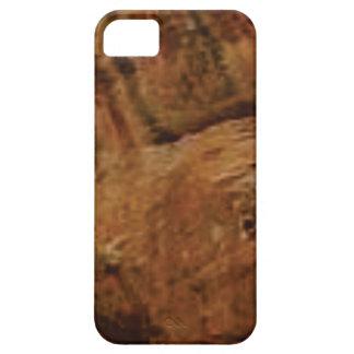 tan vertical sandstone lines iPhone 5 case