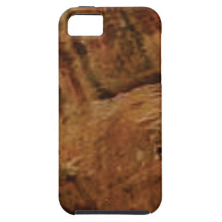 tan vertical sandstone lines iPhone 5 cover