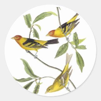 Tanager occidental - John James Audubon Sticker Rond
