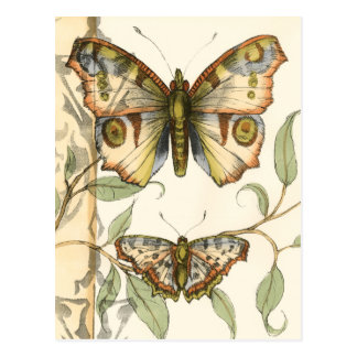 Tandem Butterflies Over Green Leaves Postcard