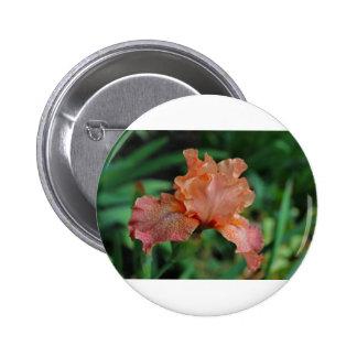 Tangerine Goddess 2 Inch Round Button