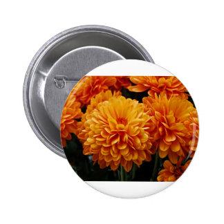 Tangerine Mums 2 Inch Round Button