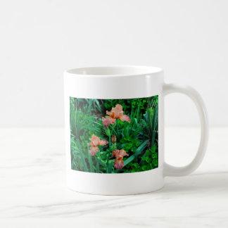 Tangerine Rhapsody Coffee Mug