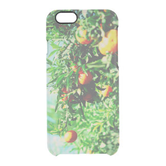 tangerines at branch. fruit collection clear iPhone 6/6S case