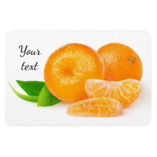 Tangerines Rectangular Photo Magnet