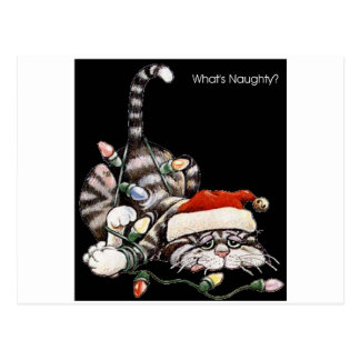 Tangled Cat Postcard