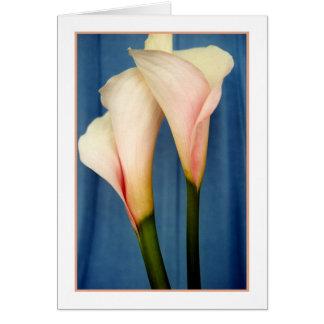 Tango Calla Lily Photo Greeting Card