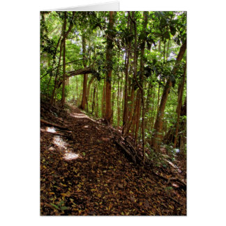 Tantalus Hiking Trail Card