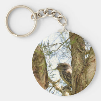TANY FROGMOUTH QUEENSLAND AUSTRALIA BASIC ROUND BUTTON KEYCHAIN