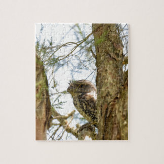 TANY FROGMOUTH QUEENSLAND AUSTRALIA JIGSAW PUZZLE