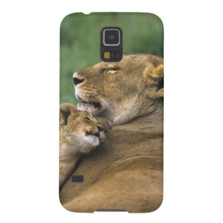 Tanzania, Ngorongoro Crater. African lion mother Galaxy S5 Cover