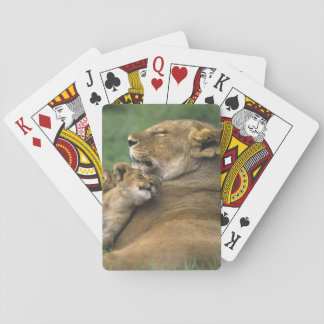 Tanzania, Ngorongoro Crater. African lion mother Playing Cards
