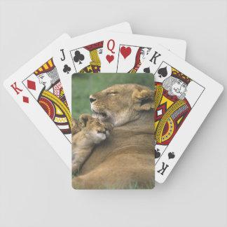Tanzania, Ngorongoro Crater. African lion mother Poker Deck