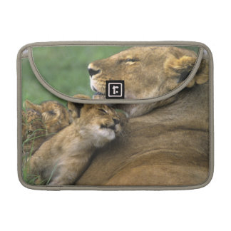 Tanzania, Ngorongoro Crater. African lion mother Sleeves For MacBook Pro