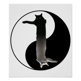 Tao of Longcat Poster
