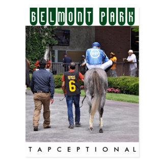 Tapceptional - Iron Horse Racing Postcard