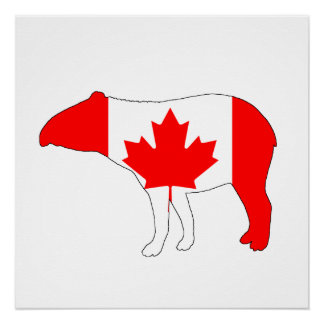 Tapir Canada Perfect Poster