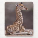 Tapis de souris de girafe de bébé