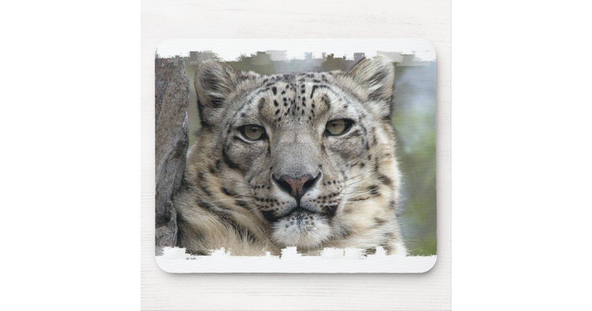 White Tiger Dans Neige Tapis de souris//Pad /& Coaster