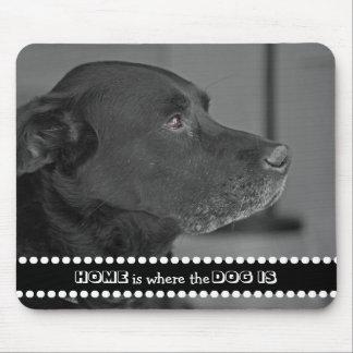 Tapis De Souris La maison de photo de chien est où le chien est