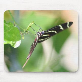 Tapis De Souris Mousepad de papillon de zèbre