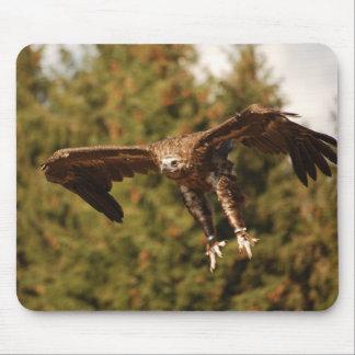 Tapis De Souris Mousepad Monk Vulture/vautours de moine