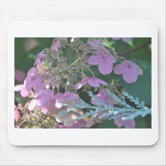 Tapis De Souris Produits floraux
