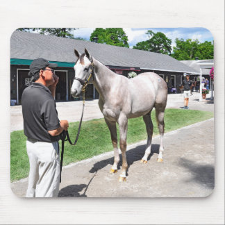 Tapit -Rote at Fasig Tipton Mouse Pad
