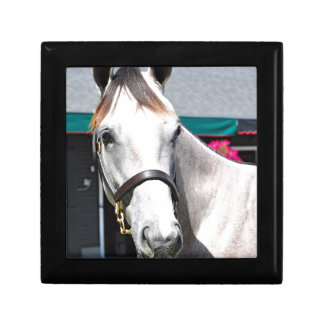 Tapit -Rote Hip #140 Jewelry Box