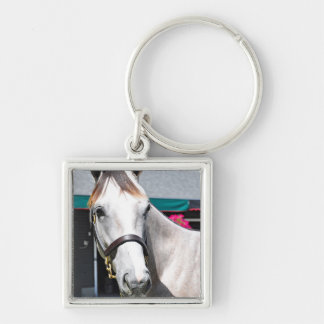 Tapit -Rote Hip #140 Silver-Colored Square Keychain