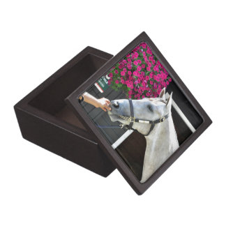 Tapit -Rote Hip no.140 Premium Keepsake Boxes