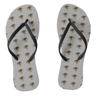 Tarantula flip-flops flip flops