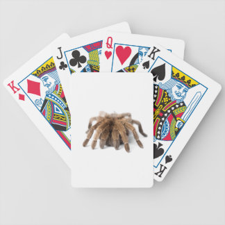 Tarantula Fuzzy Spider Bicycle Playing Cards