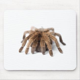 Tarantula Fuzzy Spider Mouse Pad