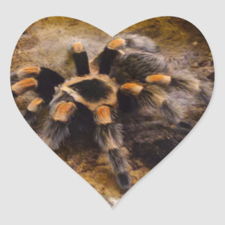 Tarantula Heart Sticker