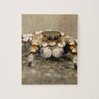 Tarantula Jumping Bird Spider awesome accessories Puzzle