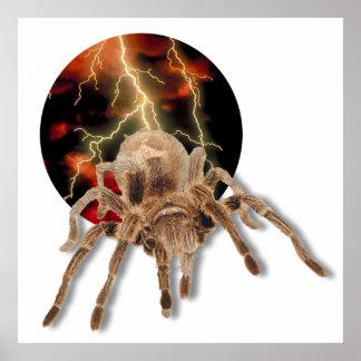 Tarantula Lightning Poster