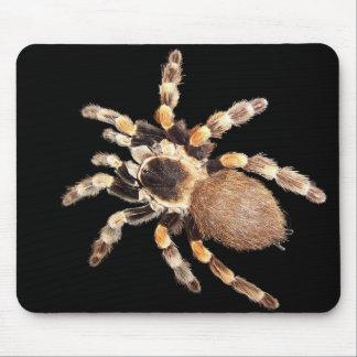Tarantula Spider Mouse Pad
