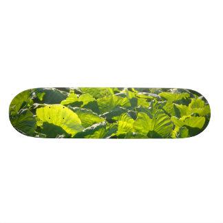 Taro plantation skateboard deck
