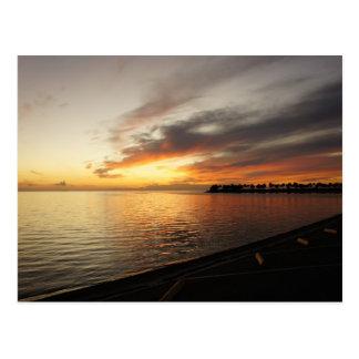Tarpon Sky Postcard